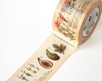 Plant Washi Tape • MT Masking Tape • MT ex Plants Wide Washi Tape • Washi Tape UK • Japanese stationery • Plant