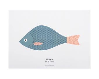 Print - A3 PERCH (Perca)