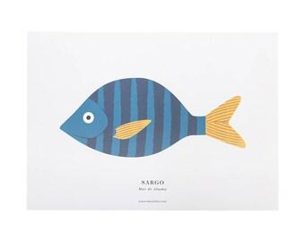 Print - A3 SEABREAM (Sargo)