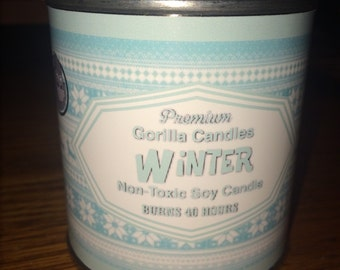 Winter scented candle mint & juniper with hints of vanilla