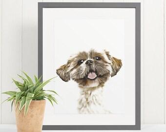pet wall art Shih Tzu lover gift dog poster dog gift pet poster Shih Tzu Personality Trait poster Shih Tzu poster Shih Tzu Wall Art