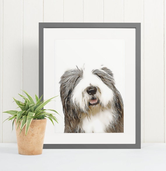 Old English Sheepdog | Art Print Poster | Room Decor | Wall Art Print | Gift Idea | A4 & A3 | Dog | Print Only