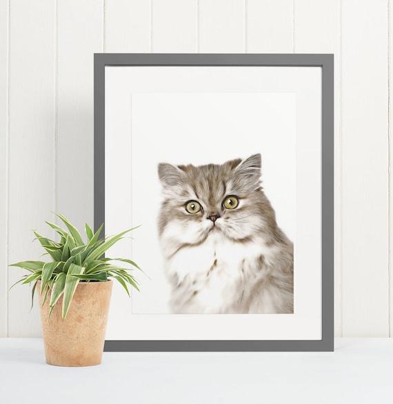 Persian Cat | Art Print Poster | Room Decor | Wall Art Print | Gift Idea | A4 & A3 | Cats | Print Only