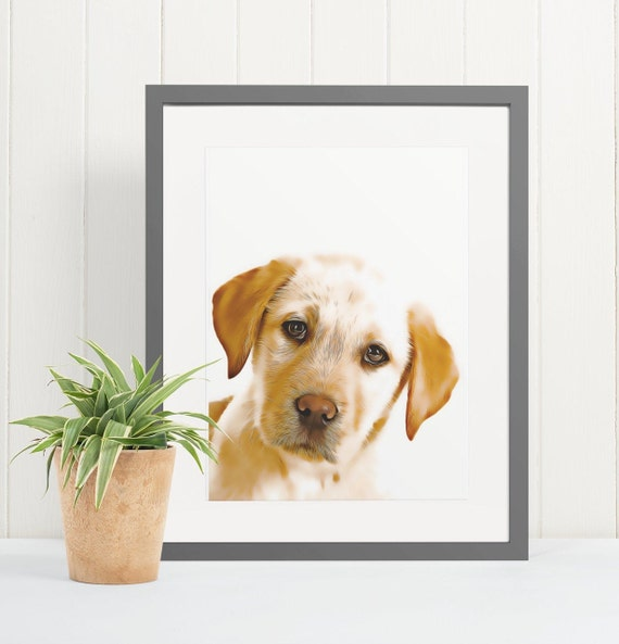 Labrador | Art Print Poster | Room Decor | Wall Art Print | Gift Idea | A4 & A3 | Dog | Print Only