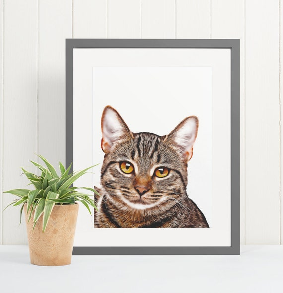 Tabby Cat | Art Print Poster | Room Decor | Wall Art Print | Gift Idea | A4 & A3 | Cats | Print Only