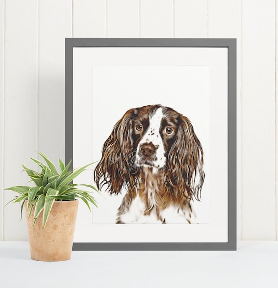 English Springer Spaniel | Art Print Poster | Room Decor | Wall Art Print | Gift Idea | A4 & A3 | Dog | Print Only