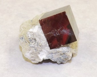 Iron Pyrite in Limestone Matrix