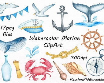 Watercolor Marine Clipart, Nautical watercolor clip art, PNG, anchor, sea shell, Digital Nautical, For Personal and Commercial Use
