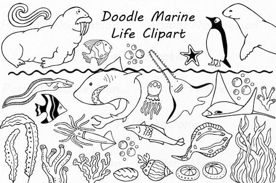 Doodle Marine Life Clipart Sea Life Clip Art Ocean Life