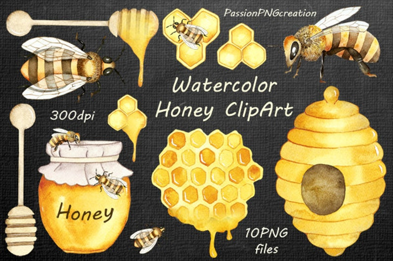 Watercolor Honey Clipart, Watercolor bee clip art, digital clipart, PNG,  Handpainted clipart, diy, for Personal and Commercial Use