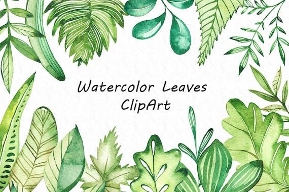 Watercolor Leaves Clipart watecolour leaf clip art digital | Etsy