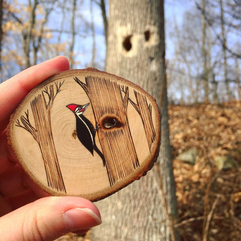 Wood burned and painted woodland bird ornament Forest friend. Pileated woodpecker ornament