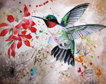 Hummingbird Watercolor painting Limited Edition Giclee Art Print from my original watercolor painting of a hummingbird, 11 x 14