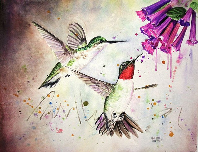 Hummingbirds Watercolor Painting Giclee Print of Ruby-Throated Hummingbirds and Trumpet Flowers by Diana Turner Wall Decor 11 x 14
