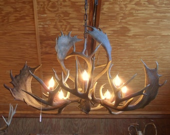 Antler chandelier etsy rustic antler chandelier fallow and whitetail antler country home lighting southwestern farmhouse aloadofball Gallery
