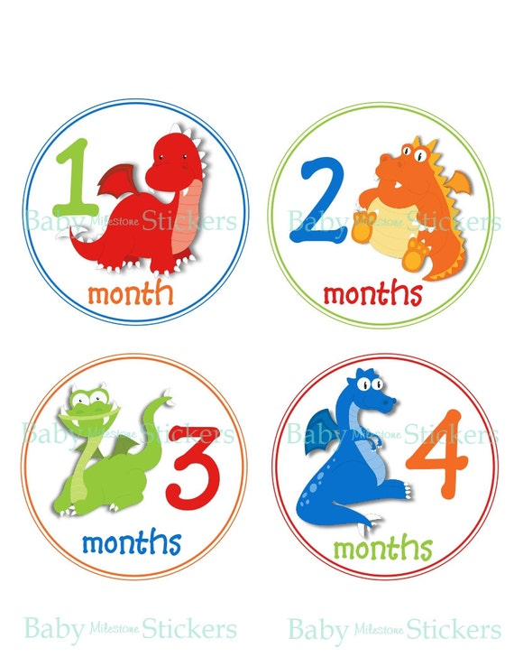 18 Month Stickers: Monthly Baby Boy Stickers Baby Month Stickers Milestone