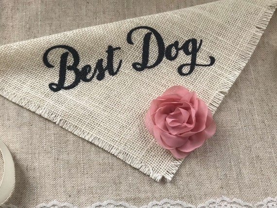 Best Dog Script Wedding Bandana With Flowers Engagement Photos Pet Wedding Accessories Save The Date Cards