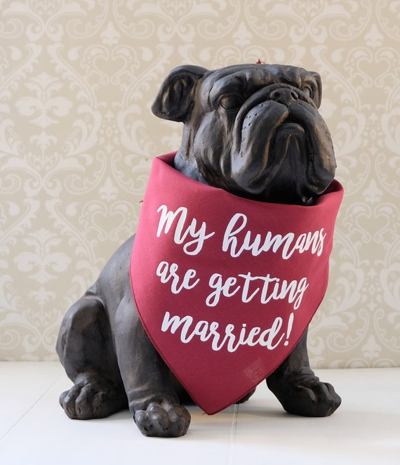 I Loved Her First Pet Wedding Dog Bandana in Cotton Personalized Dog Bandana for Bridal Engagement Photos Save the Date Custom Dog Scarf
