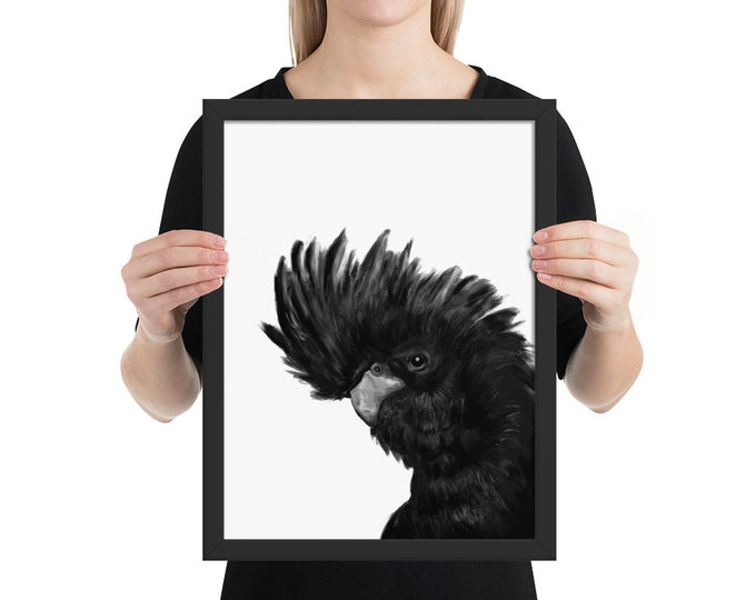 Black Cockatoo - Framed poster