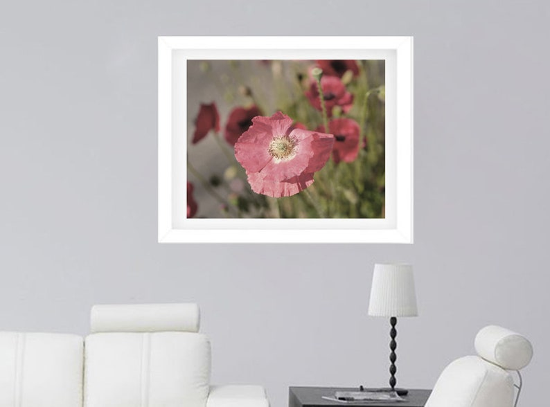 large photography print cottage bedroom wall art decor poppy art print Floral wall art print shabby chic decor pink flower photo print