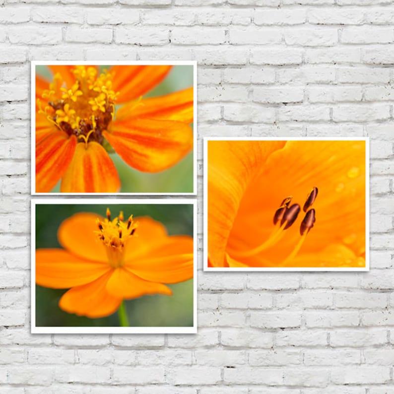 living room decor botanical print set 3 floral art pictures flower macro photography green orange gallery wall Orange wall art set
