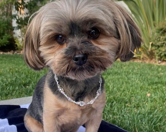 Spoiled Kingsley's Box Crystal Fur Baby Pet Necklace