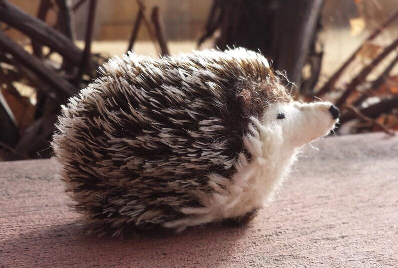 Hedghog Needlefelted Hedgehog Felt Hedgehog