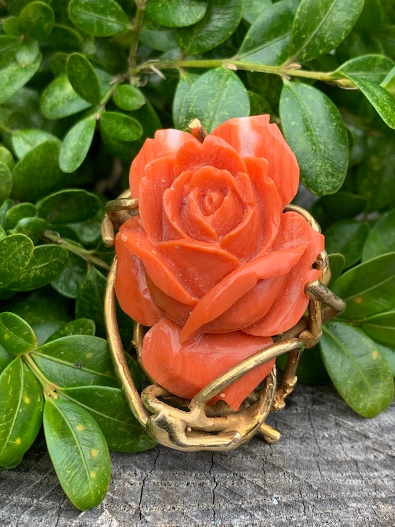 Coral Rosebud Pin, Gold Coral Rose, Craved Coral … - image 2