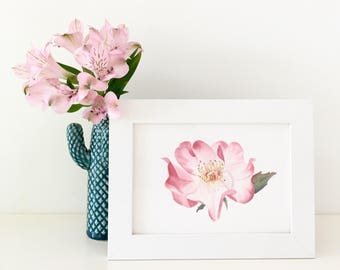 A rose for my love - Framed watercolor painting