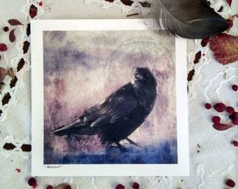 "Blackbird, Art card print 5x5"""