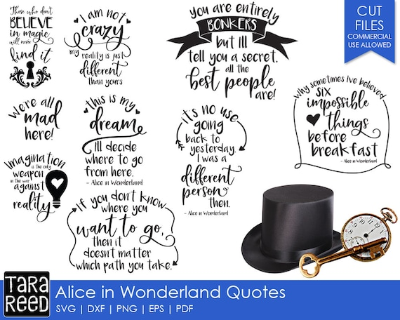 Alice In Wonderland Quotes Gorgeous Alice In Wonderland Quotes SVG And Cut Files For Crafters Etsy