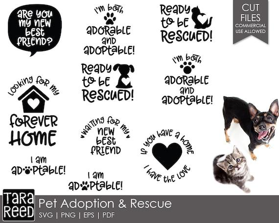 30+ Save A Life, Adopt A Pet Svg PNG