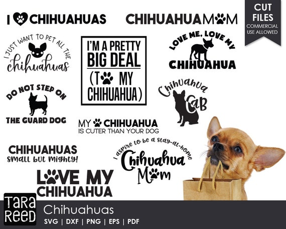 Chihuahua Svg And Cut Files For Crafters Etsy