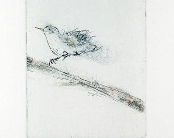 Etching print, Starling in motion, original hand-pulled etching Fine Art Print