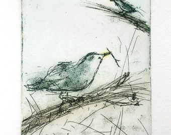 Etching print, Starlings on tree, original hand-pulled etching Fine Art Print