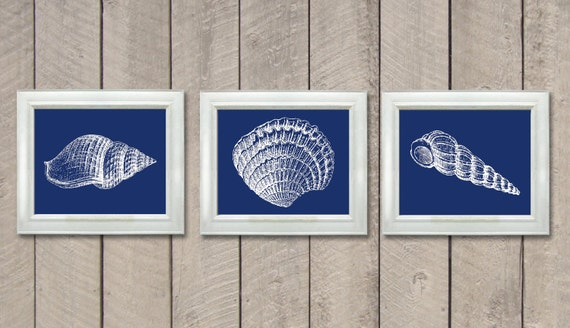 Navy Blue Bathroom White Sea Shell Seashell Set Of 3 Print Etsy