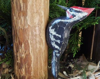 Carved Pileated Woodpecker on Pine Tree