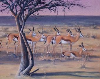 AFRICAN landscape artwork drawing of springboks ANTELOPE ART Wildlife acacia tree Chalk Pastel illustration purple yellow green muddpuppie