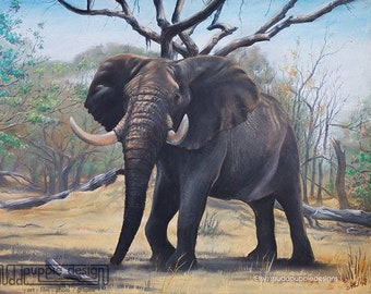 African ELEPHANT Bull artwork print ILLUSTRATION wildlife hand drawn art chalk pastel illustration - blue grey green yellow nature lovers