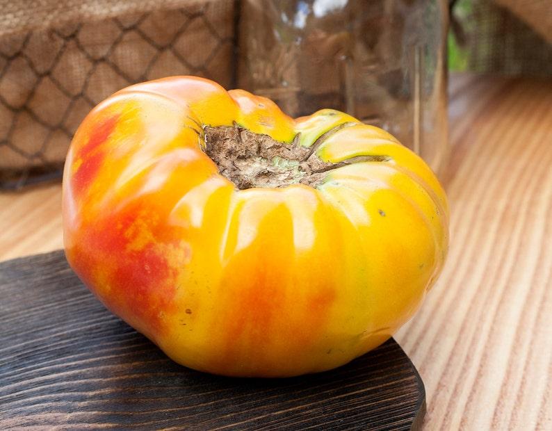 Hawaiian Pineapple Heirloom Tomato Premium Seed Packet