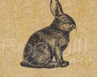 INSTANT DOWNLOAD -  Vintage Bunny Rabbit Digital Graphic - 8.5x11 - Fabric or Paper Projects - Graphic Design - Printable - Image transfer
