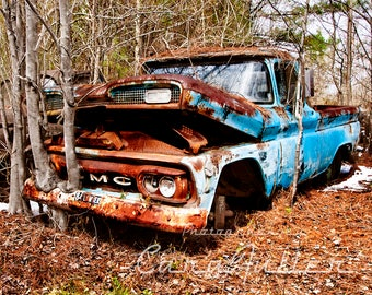 Photograph of a blue 1960 GMC Truck in the Woods with a tree growing out of the bumper