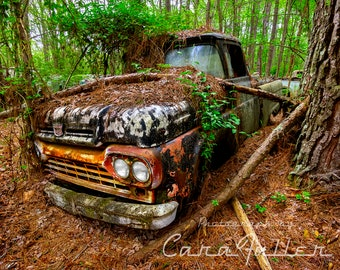 Photograph of a 1958 Black Ford F-100 Truck in the woods