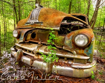 Photograph of a 1949 Pontiac on the Edge of a Pond in the Woods