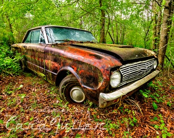 Photograph of a Black 1963 Ford Falcon in the woods