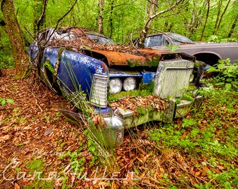 Photograph of a 1972 - 1975 Lincoln in the Woods