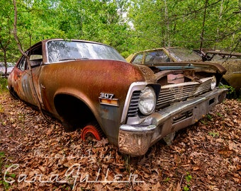 Photograph of a very rusty 1971 1972 Chevy Nova in the Woods