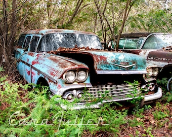 Photograph of a Blue 1958 Chevy Wagon in  the Woods