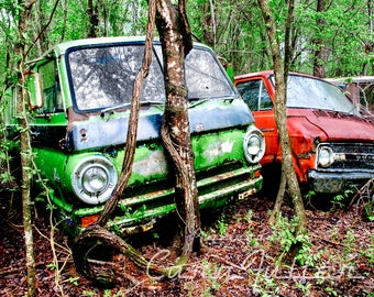 Photograph of a Green 1964-1970 Dodge A100 Forward Control Van in the Woods