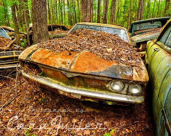 Photograph of a Rusty 1965 Chevy Corvair in the Woods